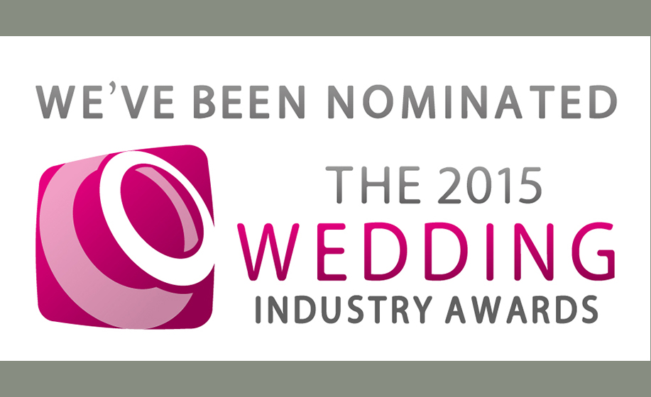 hamphire_wedding_photographer_2015_wedding_industry_awards-1