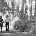 wedding photographer for Hampshire and Surrey - winchester engagement shoot